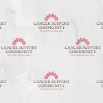 CSC Logos 1